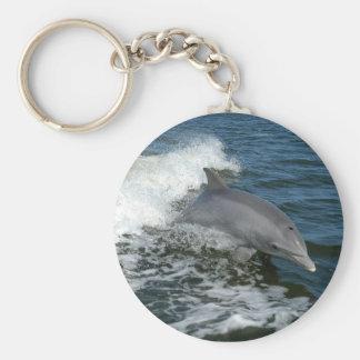 Bottlenosedelphin-Foto keychain Schlüsselanhänger