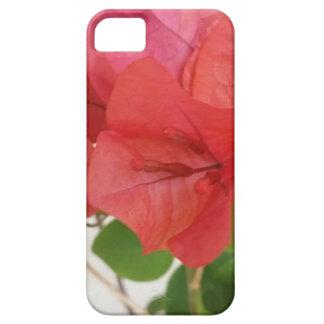 Bouganvilla-Mobiltelefon-Abdeckungen Schutzhülle Fürs iPhone 5