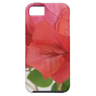 Bouganvilla-Mobiltelefon-Abdeckungen Tough iPhone 5 Hülle