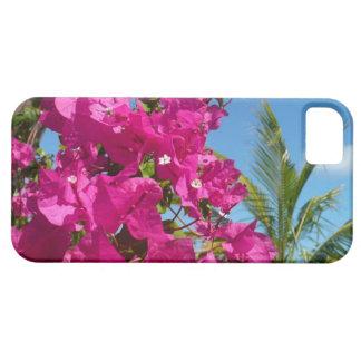 Bouganvilla-und Palme-tropische Natur-Szene Schutzhülle Fürs iPhone 5