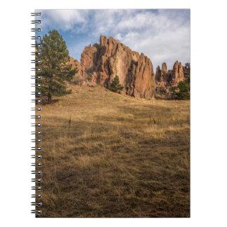 Boulder-Rot schaukelt Notizbuch Spiral Notizblock