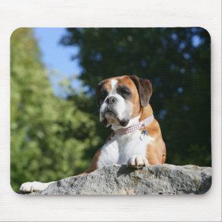 Boxer-Hund, der auf einen Felsen legt Mousepad