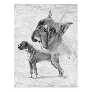 Boxer-Hunde Postkarte