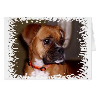 Boxer-Liebe Grußkarte