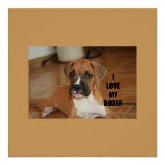 Boxer-Liebe w pic-Kitzwelpe Poster