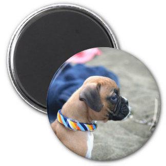 Boxer-Welpenmagnet Runder Magnet 5,1 Cm