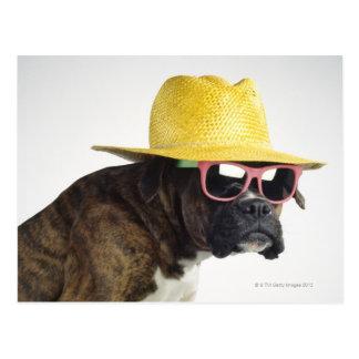 Boxerhund mit Hut und Gläsern Postkarte