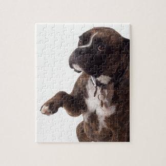 Boxerhund Puzzle