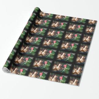 Boxerhundegeschenk-Packpapier Geschenkpapier