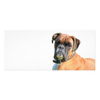 Boxerhundeschönes Foto-Gewohnheits-Lesezeichen Werbekarte