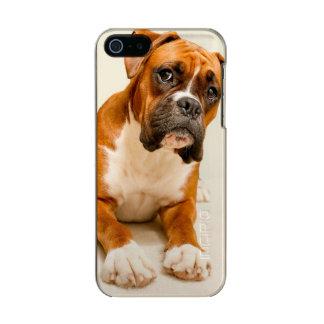 Boxerwelpe auf Elfenbeincremehintergrund Incipio Feather® Shine iPhone 5 Hülle