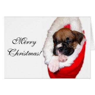 Boxerwelpen-Grußkarte der frohen Weihnachten