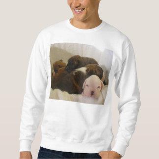 Boxerwelpen Sweatshirt