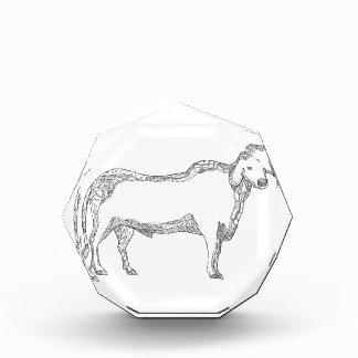 Brahman-Stier-Seiten-Gekritzel-Seite Auszeichnung