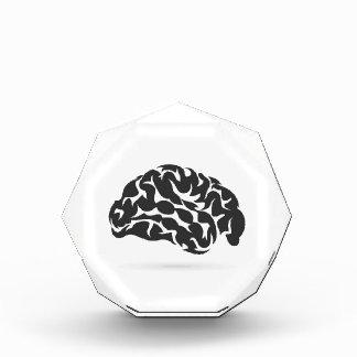 Brain6 Auszeichnung
