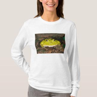 Brasilianischer Horn-Frosch, Ceratophrys cornuta, T-Shirt