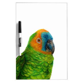 Brasilianischer Papagei Memoboard