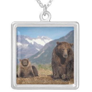 Braunbär, Grizzlybär, Sau mit Jungem an Versilberte Kette