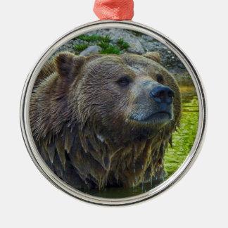 Braunbär in Wasser 002 02.1. Silbernes Ornament