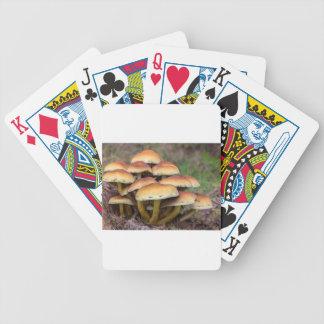 Braune Pilze der Gruppe im Fallwald Bicycle Spielkarten