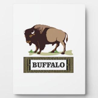 brauner Umbau des Büffels Fotoplatte