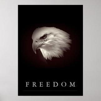 Bräunlicher Freiheits-Amerikaner Eagle stellen Poster