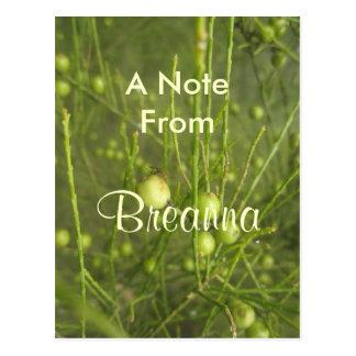 Breanna Postkarte