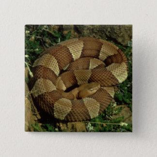 breit-mit einem Band versehener copperhead Quadratischer Button 5,1 Cm