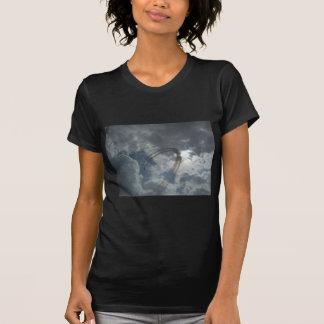 Bremsungs-Fliegen-Demonstration T-shirt