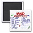 BRIARD Eigentums-Gesetze 2 Quadratischer Magnet