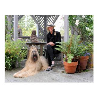 Briard Hund unter Gazebo Postkarte