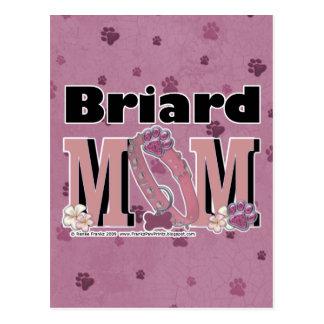Briard MAMMA Postkarte