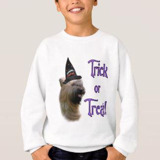 Briard Trick Sweatshirt