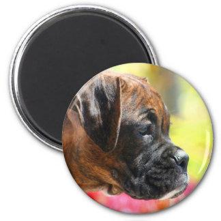 Brindle Boxerwelpenmagnet Runder Magnet 5,7 Cm