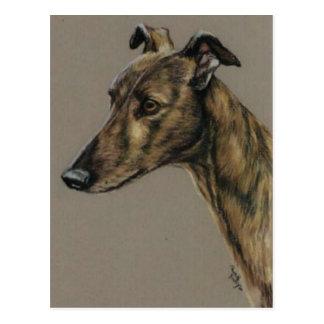 """Brindle Windhund-"" Hundekunst-Postkarte"