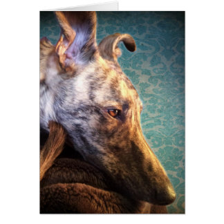 Brindled Lurcher Sighthound lange Hundewindhunde Karte