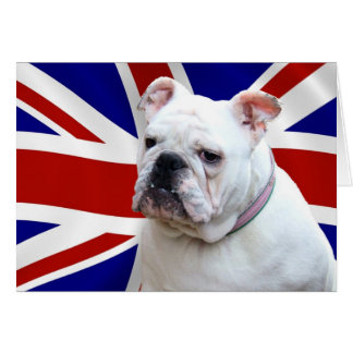 Britische Bulldogge Karte