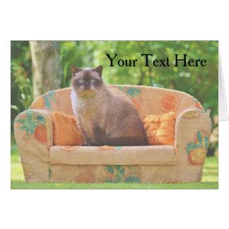 Britische Shorthair Katze auf orange Sofa Karte