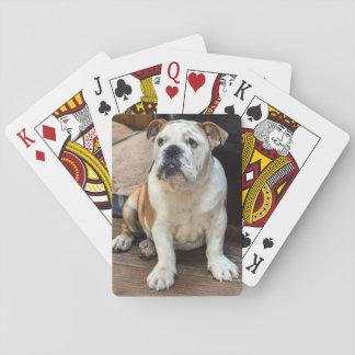Britischer Bulldoggenwelpe Spielkarten