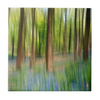 BRITISCHES England   Bluebell-Eichen-Waldland im Fliese