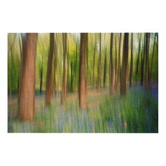 BRITISCHES England | Bluebell-Eichen-Waldland im Holzwanddeko