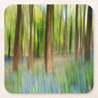 BRITISCHES England | Bluebell-Eichen-Waldland im Rechteckiger Pappuntersetzer