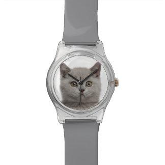 Britisches Shorthair Kätzchen Uhr