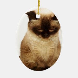 Britisches Shorthair Katzen-Haustier Mieze Keramik Ornament