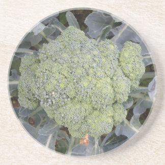 Brokkoli-Untersetzer Sandstein Untersetzer