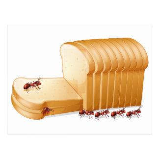 Brot und Ameisen Postkarte