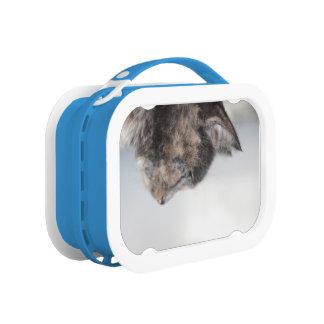 Brotdose mit Katzenporträt