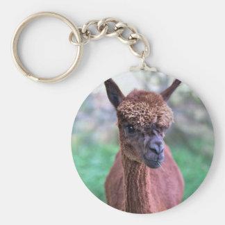 Brown-Alpaka-Schlüsselring Schlüsselanhänger