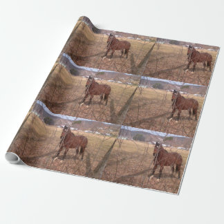 Brown-Bauernhof-Pferd West Virginia Geschenkpapier