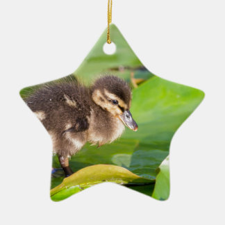 Brown-Entlein, das auf Wasserlilien-Blätter geht Keramik Ornament